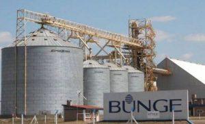 La firma posee su planta en la localidad de Campana, en Buenos Aires.